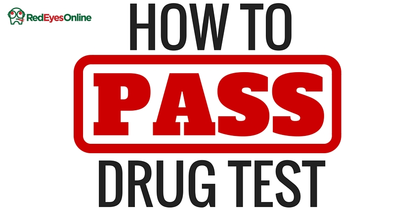 how to pass drug test