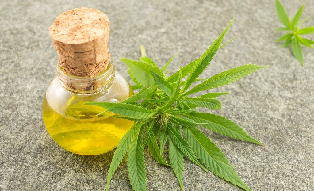 cannabis oil and qwiso